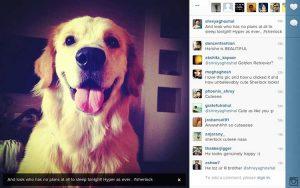 sherlock, reads instagram